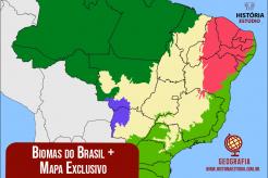 Mapa Cartográfico de Biomas do Brasil